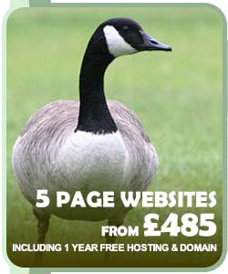 5 Page Websites from £375
